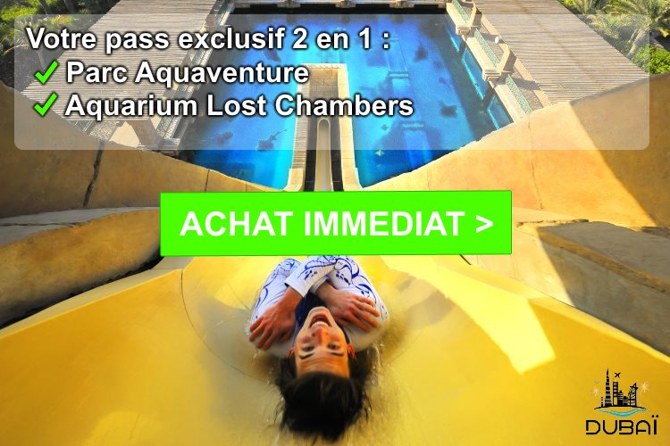 Pass Aquaventure