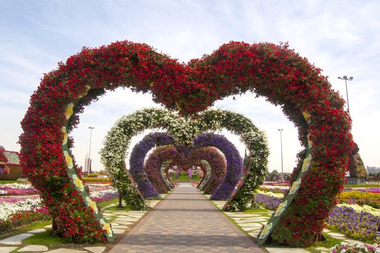 Miracle Garden Dubaï